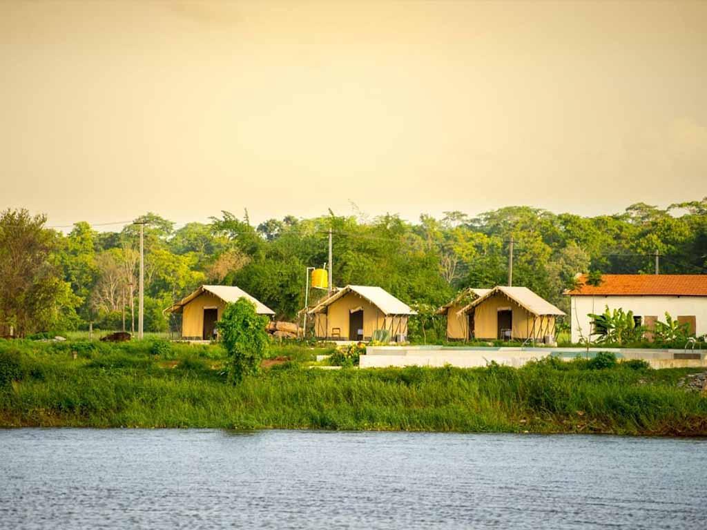 River View Safari Tents